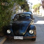 Valparaiso, Chile - a real Bug!
